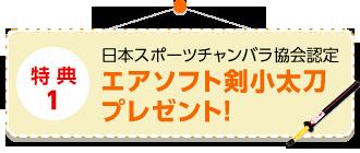 特典1 日本スポーツチャンバラ協会認定エアソフト剣小太刀プレゼント!